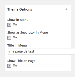 pages-wordpress-theme-options.png