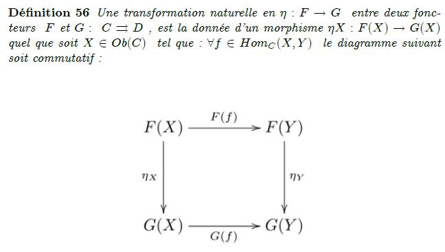 16-transformation naturelle entre deux foncteurs : En théorie des catégories, une transformation naturelle permet de transformer un foncteur en un autre tout en respectant la structure interne (i.e. la composition des morphismes) des catégories considérées. On peut ainsi la voir comme un morphisme de foncteurs. Définition Soient C et D deux catégories, F et G deux foncteurs covariants de C dans D. Une transformation naturelle η de F vers G est la donnée, pour tout objet X de C, d'un morphisme de D : \eta_X : F(X) \rightarrow G(X), telle que pour tous objets X et Y de C et tout morphisme f de X dans Y, le diagramme suivant soit commutatif : Natural transformation.svg On peut de même définir la notion de transformation naturelle entre deux foncteurs contravariants en inversant uniquement le sens des flèches horizontales du diagramme ci-dessus. Si pour tout objet X de C, ηX est un isomorphisme, on dit que η est une « équivalence naturelle » ou un « isomorphisme naturel ».