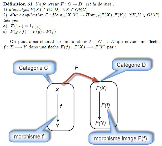 25-définition-d-un-foncteur : Un foncteur (ou foncteur covariant) F : C → D d'une catégorie C dans une catégorie D est la donnée d'une fonction qui, à tout objet X de C, associe un objet F(X) de D, d'une fonction qui, à tout morphisme f : X → Y de C, associe un morphisme F(f) : F(X) → F(Y) de D, qui respectent les identités : pour tout objet X de C,F(\mathrm{Id}_A)=\mathrm {Id}_{F(A)}, respectent la composition : pour tous objets X, Y et Z et morphismes f : X → Y et g : Y → Z de C,F(g\circ f)=F(g)\circ F(f). Un foncteur contravariant G d'une catégorie C dans une catégorie D est un foncteur covariant de la catégorie opposée Cop dans D. À tout morphisme f : X → Y de C, il associe donc un morphisme G(f) : G(Y) → G(X) de D, et l'on a la « relation de compatibilité » G(g ∘ f) = G(f) ∘ G(g).