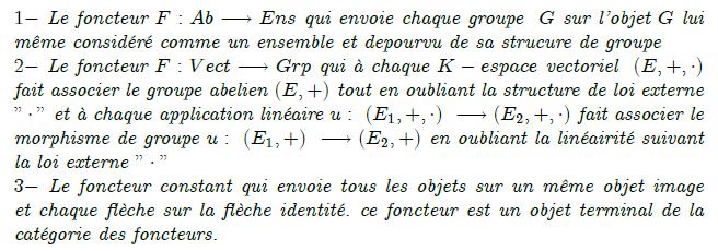 27-exemples-de-foncteurs : Foncteurs conservatifs Trivialement, tout foncteur F : C → D préserve les isomorphismes, c'est-à-dire que si f est un isomorphisme dans C alors F(f) est un isomorphisme dans D. Le foncteur F est dit conservatif si réciproquement, un morphisme f dans C est un isomorphisme dès que F(f) en est un dans D. Exemples Un morphisme F de monoïdes (cf. fin du § « Exemples » ci-dessus) est conservatif si et seulement si tout antécédent par F d'un élément inversible est inversible. Tout foncteur pleinement fidèle est conservatif. Le foncteur d'oubli de Grp dans Set est conservatif. Foncteurs adjoints Article détaillé : Foncteur adjoint. Soient C et D deux catégories, F un foncteur de C dans D et G de D dans C, tels que pour tout objet X \in C et Y \in D on ait une bijection, naturelle en X et Y, {\rm Hom}_D \left( F \left (X \right), Y\right)\simeq{\rm Hom}_C \left( X , G \left (Y \right) \right). Alors F est dit adjoint à gauche de G, et G adjoint à droite de F.