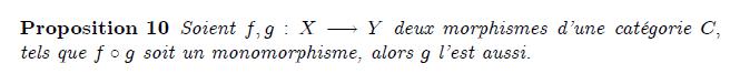 Les monomorphismes sont la généralisation aux catégories des fonctions injectives ; dans certaines catégories, les deux notions coïncident d'ailleurs. Mais les monomorphismes restent des objets plus généraux (voir l'exemple ci-dessous). Le dual d'un monomorphisme est un épimorphisme (c'est-à-dire qu'un monomorphisme dans la catégorie C est un épimorphisme dans la catégorie duale Cop).