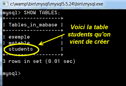 create-table-show-table-mysql